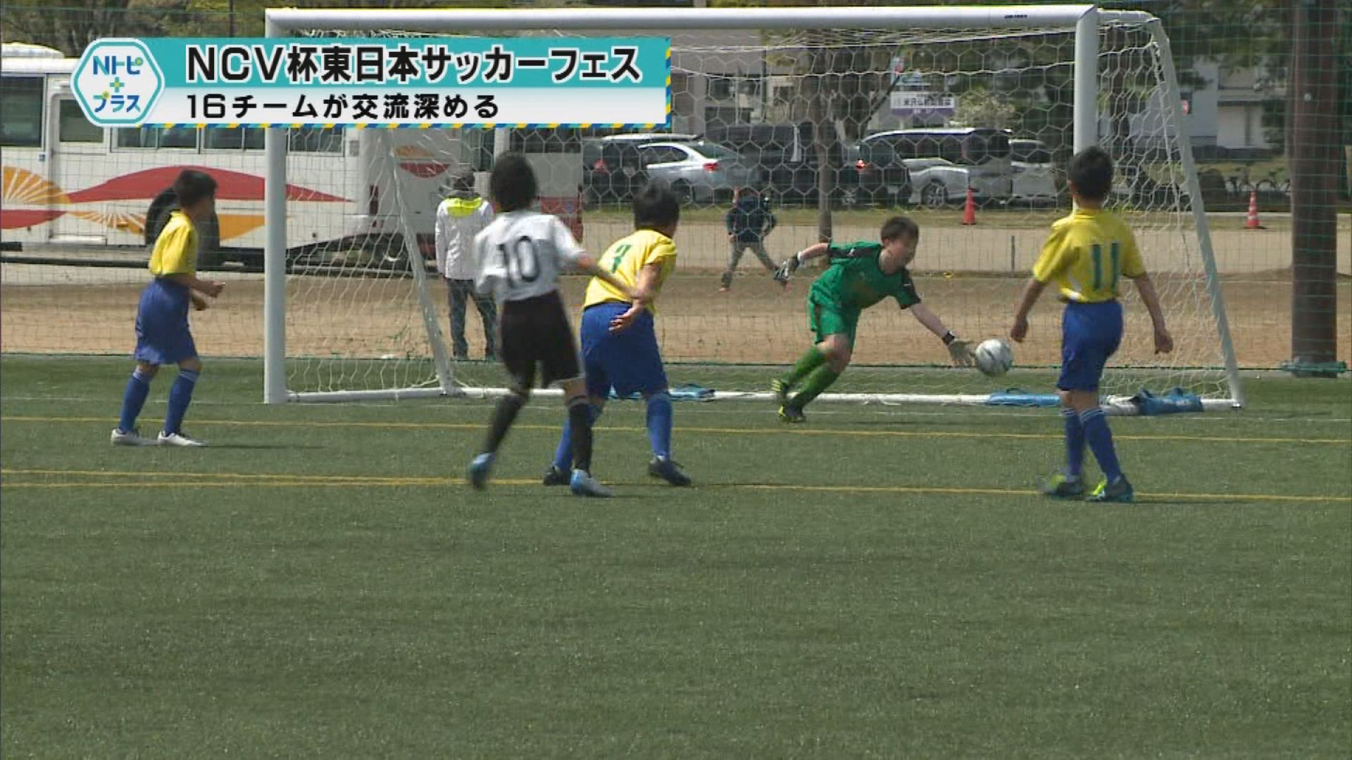 「NCV杯東日本サッカーフェスティバル」16チームが交流深める