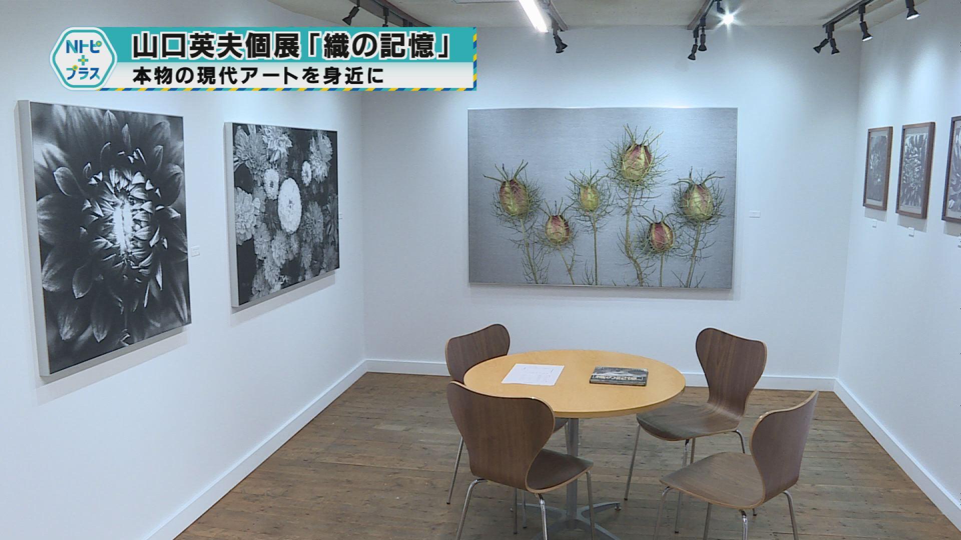 山口英夫個展「織の記憶」本物の現代アートを身近に